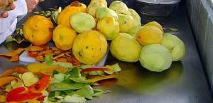 usaran cáscaras y residuos de jugos y pulpas de frutas