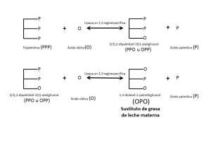 reaccion lipido estructurado SGLM