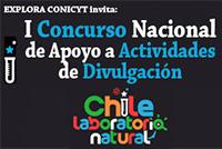 Concurso-Actividades-LLNN-200