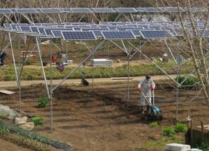 solar-y-cultivo