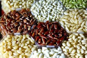 Los granos de arroz de la imagen revelan solo una pequeña proporción de la variación de los rasgos en las más de 40.000 variedades de arroz del mundo. / IRRI