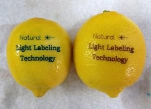 limon_FDA